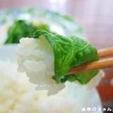びっくり!?野沢菜漬けみたいな菜の花漬け