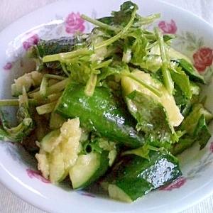 きゅうりと香菜の中華風和え物 涼拌黄瓜