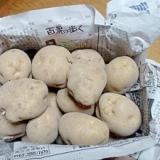 家庭で ジャガイモの長期保存法 ・・甘味が増します