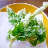 春のかおり♪山うどの細い茎&葉の天ぷら