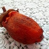 ハンガーで簡単☆干し柿