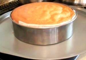 禁断のスポンジケーキ