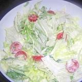 レタスと水菜のコールスロー風サラダ