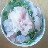 タチウオ丼