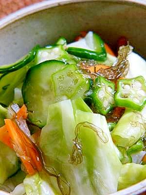 いろいろ野菜の浅漬け@ポリ袋