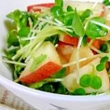 林檎と貝割れ大根のサラダ