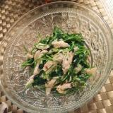 節約食材で簡単副菜!豆苗とささみのわさびマヨ和え