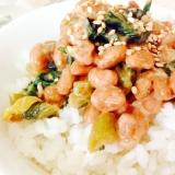 ゴマ油香る❤︎大根の葉とキムチの納豆マヨご飯
