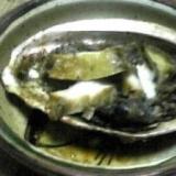 酒の肴:焼き鮑