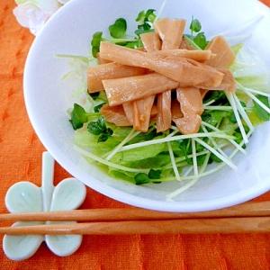味付けメンマで簡単!中華風サラダ