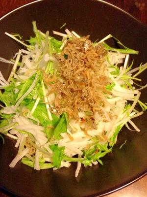 カリッカリッ☆大根と水菜のサラダ