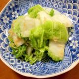 白菜のポリ袋で簡単★ナンプラー漬け