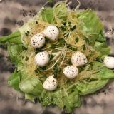 モッツァレラとそうめんカボチャの巣篭もり風サラダ