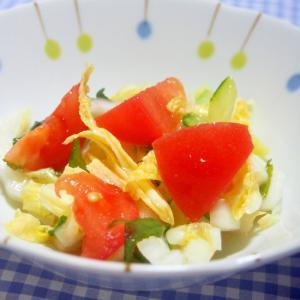 トマト・白菜・きゅうり・大葉コールスロー