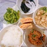 ワンプレート 鮭の卵焼き 生姜納豆 酢の物サラダ