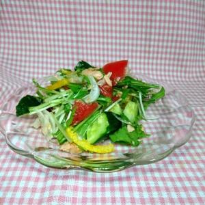水菜 きゅうり トマト 新玉ねぎ シーチキンサラダ