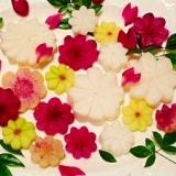 型無し☆大根のお花の飾り切り