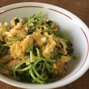 豆苗のふわふわ卵炒め