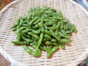 下拵えと塩分濃度☆ 「美味しい枝豆のゆで方」