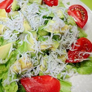アボカドとシラスレタスのサラダ