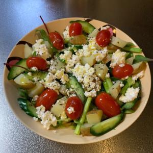 カッテージチーズの彩りサラダ