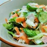 生野菜がたくさん食べられる 大根レタスサラダ