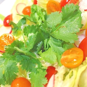 簡単!スイートチリソースで食べるパクチー入りサラダ