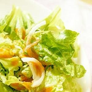 レタスと新たまねぎのサラダ