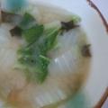 みそ汁☆白菜 人参 人参の葉 長ネギ
