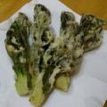 必ずからりと揚がる、タラの芽の天ぷら
