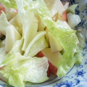 レタスとりんごの豆乳マヨネーズサラダ