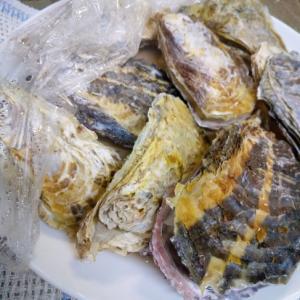 から付き牡蠣のレンジ蒸し