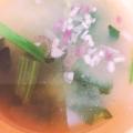 ミョウガと油揚げの味噌汁