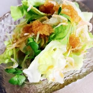 カルシウム!レタスと小えびの大根おろしサラダ
