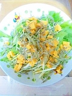 水菜と小女子のサラダ
