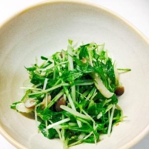 簡単!水菜の胡麻サラダ