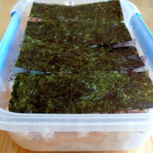 紫蘇ご飯にサーモンとアボカドを挟んだ海苔弁