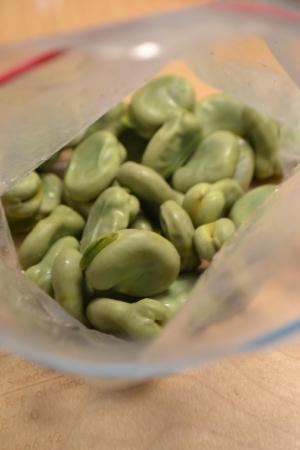 *そら豆の冷凍保存*
