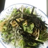 サニーレタスと水菜と白ネギのやみつきサラダ レシピ