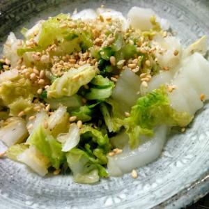 乳酸菌たっぷり白菜のぬか漬け
