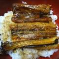 生姜タレの鰻丼