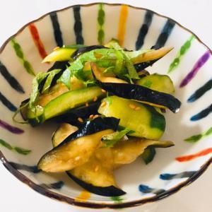 定番野菜の漬物♬ ナスとキュウリの即席漬け