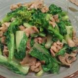 白菜の菜花と豚肉の炒め物♪