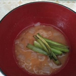 小松菜と玉ねぎのみそ汁