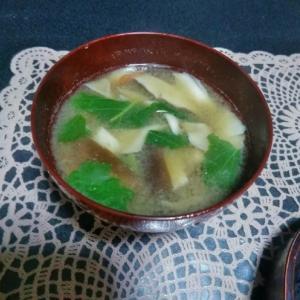 ヒラタケとほうれん草の味噌汁