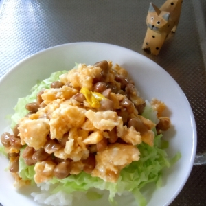 レンジで簡単キャベツたっぷり納豆卵丼
