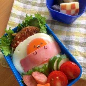 大人気!お肉を使った「子供のお弁当」レシピ