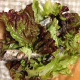 オイルサーディンとレタスのサラダ