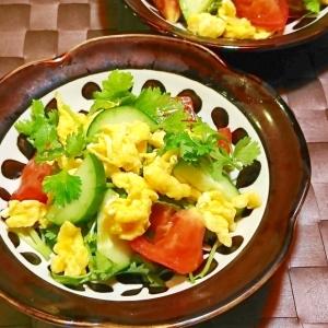 パクチーと玉子とトマトの三色サラダ