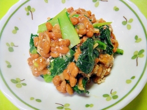 小松菜となめたけの納豆和え